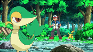 Pokémon Season 14 : Snivy Plays Hard to Catch!