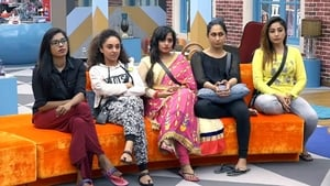 Bigg Boss Season 1 : Day 38: Story of the House