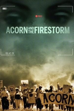 Acorn and the Firestorm