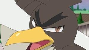 Pokémon Season 23 :Episode 26  Jump! Koiking Put it On! Yadoking