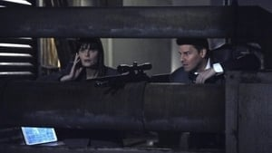 Bones Season 6 : The Killer in the Crosshairs