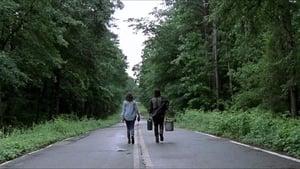 The Walking Dead Season 9 : Warning Signs