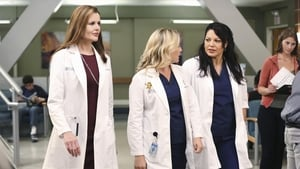 Grey's Anatomy Season 11 : I Must Have Lost It on the Wind