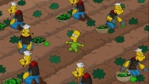 The Simpsons Season 24 : A Test Before Trying