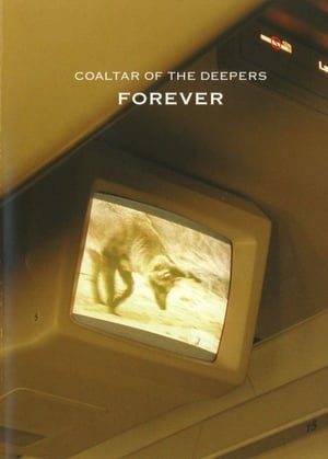 Coaltar Of The Deepers - Forever