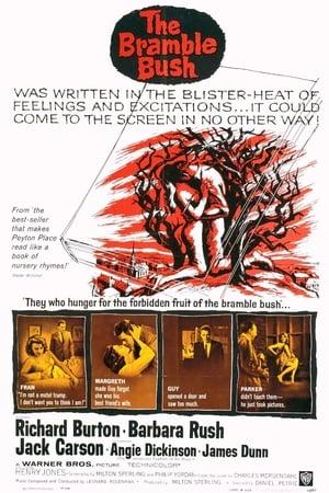 The Bramble Bush (1960)