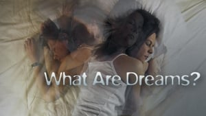 What Are Dreams?
