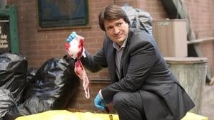 Brooklyn Nine-Nine Season 4 : Serve & Protect