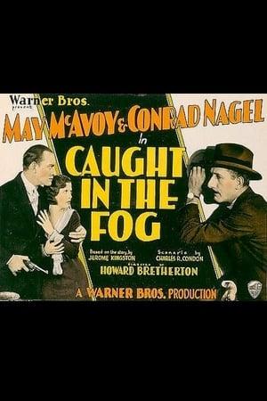 Caught in the Fog