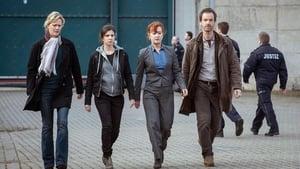 Scene of the Crime Season 49 : Episode 6