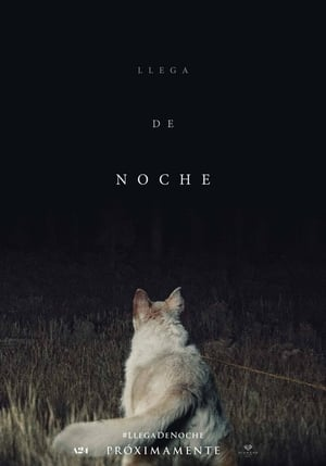 Llega de noche / It Comes at Night (2017)