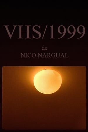 VHS/1999 (2017)
