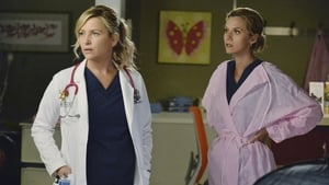 Grey's Anatomy Season 9 Episode 24