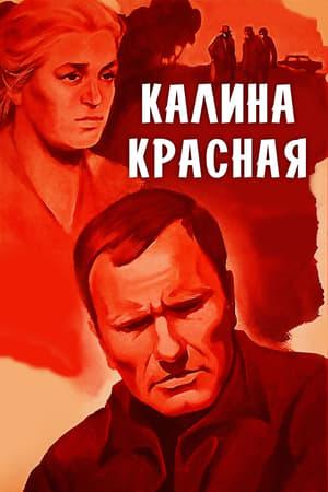 Калина Красная