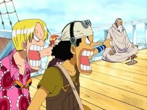 Captura de One Piece 9×288