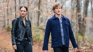 MacGyver Season 5 :Episode 11  C8H7ClO + Nano-Trackers + Resistance + Maldives + Mind Games