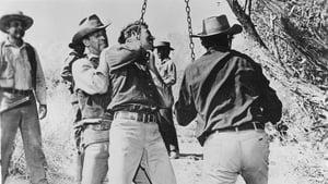 Watch Showdown (1963)