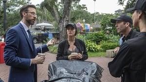 NCIS: New Orleans Season 5 :Episode 3  Diplomatic Immunity