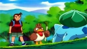 Pokémon Season 1 : So Near, Yet So Farfetch'd