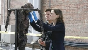 Bones Season 2 : Judas on a Pole