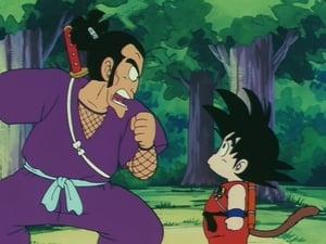 Llegó el ninja Púrpura