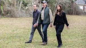 NCIS: New Orleans Season 5 :Episode 17  Reckoning