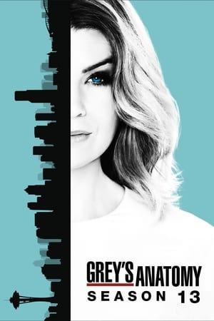Regarder Grey's Anatomy Saison 13 Streaming