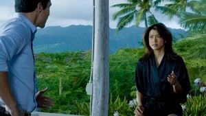 Hawaii 5-0 saison 5 episode 14