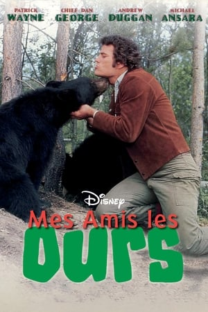 Mes amis les ours