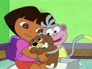Dora the Explorer Season 4 :Episode 11  Dora's Got A Puppy