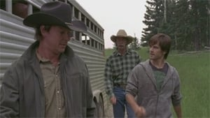 Heartland Season 4 :Episode 9  Local Hero
