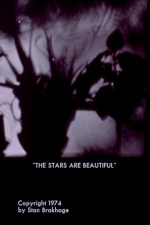 The Stars Are Beautiful