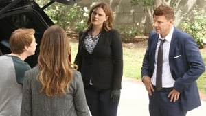 Bones Season 12 : The Tutor in the Tussle