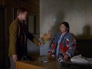 Doctor en Alaska 3X9 Online Subtitulado