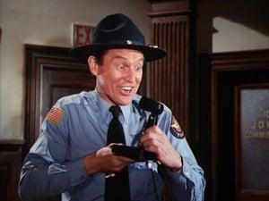 Officer Daisy Duke