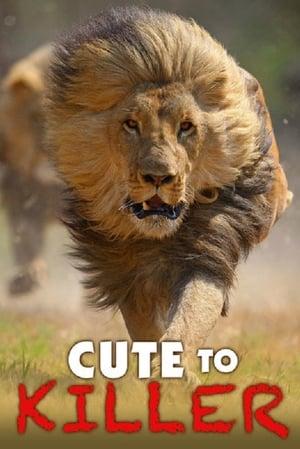 Cute to Killer