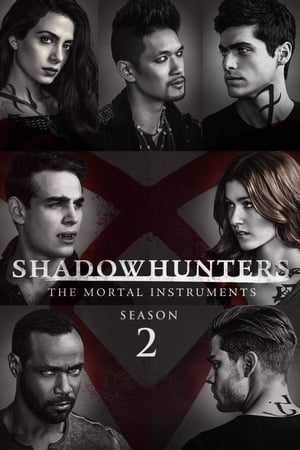 Regarder Shadowhunters Saison 2 Streaming