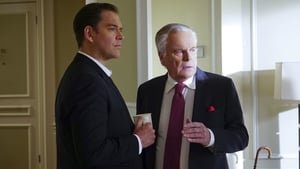NCIS Season 13 : Reasonable Doubts