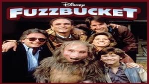 Captura de Fuzzbucket