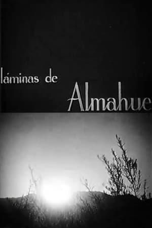 Láminas de Almahue