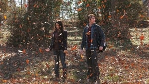 The Vampire Diaries S02E17 HD 720p Watch Online Download