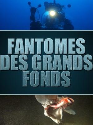 Fantômes des grands fonds – Requins des profondeurs
