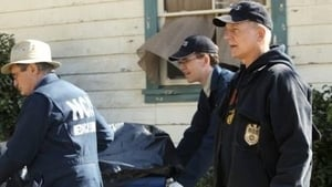 NCIS Season 10 :Episode 22  Revenge