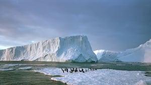 Watch Antarctica: On the Edge (2014)