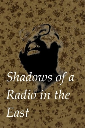 Shadows of a Radio in the East