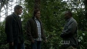 Supernatural Saison 5 Episode 16