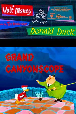 Donald visite le Grand Canyon