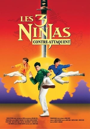 Affiche Ninja Kids 2 : Les 3 Ninjas contre-attaquent