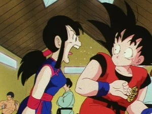 Dragon Ball Season 1 :Episode 134  The Turbulent Tenkaichi Tournament