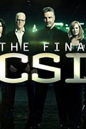 CSI: Vegas - Am Ende gilt nur, was wir getan online stream